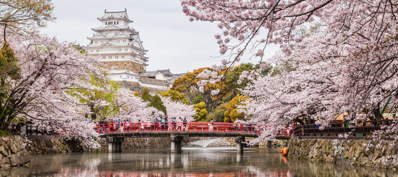 The United States and Japan: A Celebration of Cultural and Economic Ties